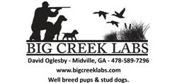 Big Creek Kennels