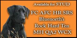 FC AFC Ten