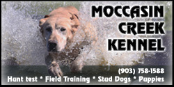 Moccasin Creek Kennel