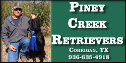 Piney Creek Retrievers