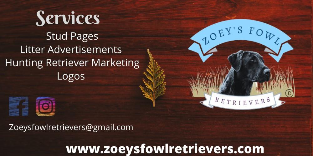Zoey Fowl Retrievers